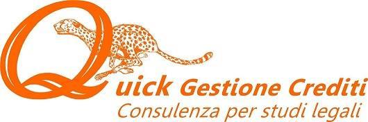 Quick Gestione Crediti di Luca Spinelli Bini